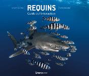 Requins, Guide de l'Interaction Ed Gap